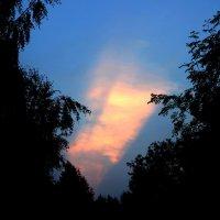 закат :: Андрей Скорняков