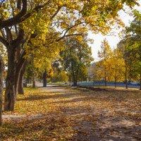 Осень в городе :: Виталий