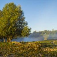 Последний туман на сегодня :: Сергей Корнев