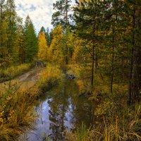 Осенний этюд :: vladimir Bormotov