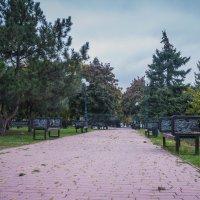 осенний парк утром :: Алина Гриб