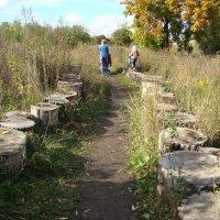 Выдался хороший денек для прогулки :: марина ковшова
