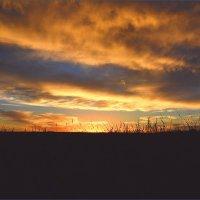Багровый закат :: Лариса Димитрова