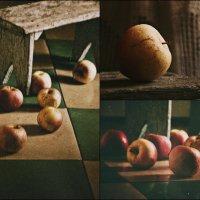 Яблочные истории :: Ольга Мальцева