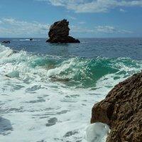 Бетховен в море :: liudmila drake