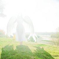 Ангел спустился :: Дмитрий Климович