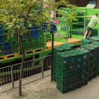 Зелёный город Гонконг) :: Sofia Rakitskaia