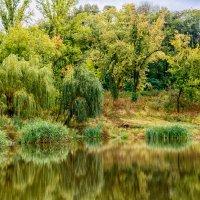 Осенний покой :: Юрий Шапошник