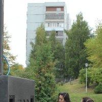 звуки скрипки :: Наталья Золотых-Сибирская