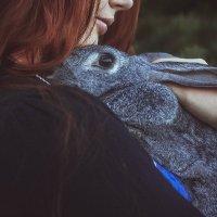 Кролик :: Наталья Мальцева