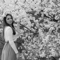 Весна :: Ольга Фомичева