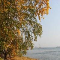 Вот и осень. :: Андрей