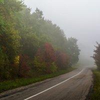 Дорога в никуда... :: ALEXANDR L