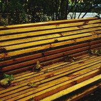 осенняя скамейке в парке :: Александр Корчемный
