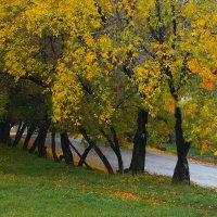 Рано утром ,на  рассвете,после дождичка,в четверг! :: A. SMIRNOV