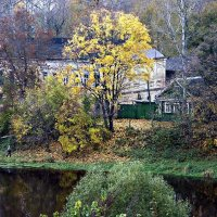 Осень золотая :: Александр Горбунов