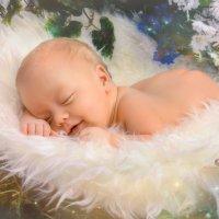 Сладкие грезы (sweet dreams) :: Андрей Володин