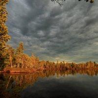 Солнце осени. :: Алексей Хаустов
