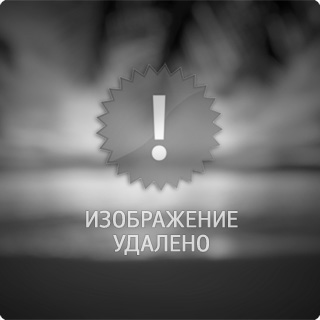 Purple bee :: Andrii Kazun