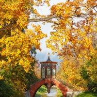 Крестовый мост, Царское село :: Александр Кислицын