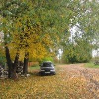 Осень в селе. :: Михаил Попов