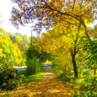 Осенний пейзаж :: Вячеслав Баширов