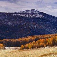На горы взор, пусть неутомимым будет 21 :: Сергей Жуков