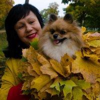 Вот и осень... :: Александр Артюхов