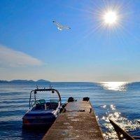 Утро в море :: Виктор Шандыбин