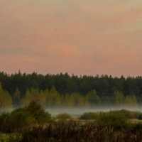 Осенние туманы. :: Анатолий. Chesnavik.