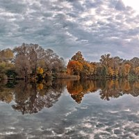 Осень :: Елена Чижова