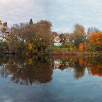 Осень в Ясной поляне :: Елена Чижова