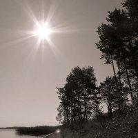 Солнце :: Михаил Цегалко