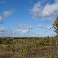 Осенние дали :: kolyeretka