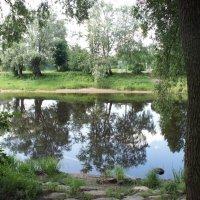 Набережная реки Перерытицы :: Елена Смолова