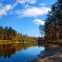 В солнечной осенней тишине... :: Лесо-Вед (Баранов)