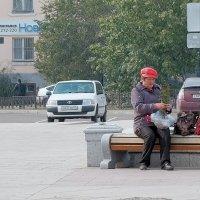 Дармовые семена с городской клумбы :: Елена Фалилеева-Диомидова
