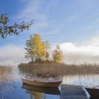 в путь, за туманом :: liudmila drake