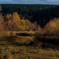 Осень :: Алексей Обухов