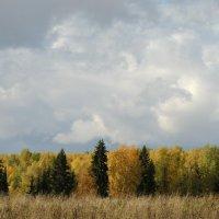 Вятская осень :: Ольга Тумбаева
