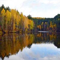 Осциллограмма октября (1) :: Полина Потапова