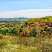 Осенний пейзаж :: Юрий Шапошник