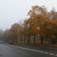 Туман :: Владимир Д
