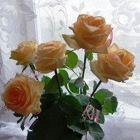 Розы чайные. :: Наталья