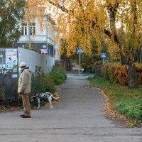 Замаскировался под березку :: Татьяна Копосова