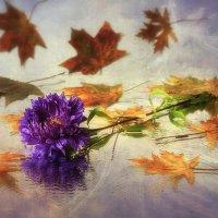 Осенний вальс :: Ирина Приходько