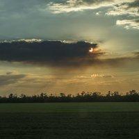 закат в степи :: Лариса Батурова