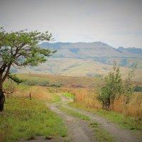 Квазулу-Наталь, ЮАР :: Julia A