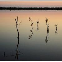 Тишина на закате. :: Алексей Хаустов