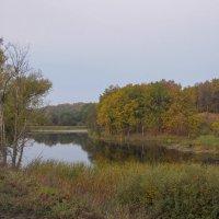 Осеннее озеро :: Сергей Тагиров